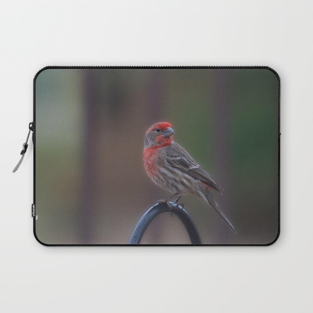 Pretty Bird - House Finch Laptop Sleeve by alaskanmommabear (LSV6660743) photo