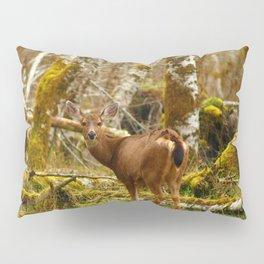 Deer In The HOH Rainforest Pillow Sham