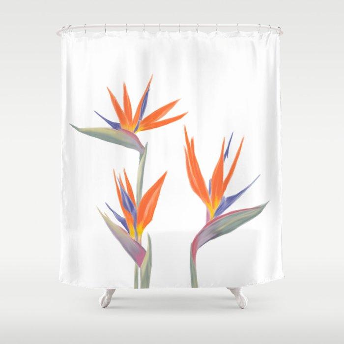 Bird Of Paradise Shower Curtain By Cndahl