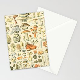 Mushroom Diagram // Champignons II XL by Adolphe Millot 19th Century Science Textbook Artwork Stationery Cards