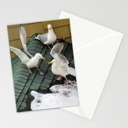 Brawling Gulls (4) Stationery Cards