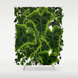 DECORATIVE GREEN IVY LEAVES PATTERN WHITE ART Shower Curtain