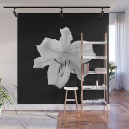 Lily -  black and white fine art photography Wall Mural