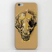 badger iPhone & iPod Skins featuring Badger by elambonebright