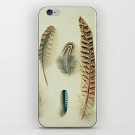 The Feather Collection iPhone Skin