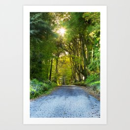 Sunset in the Alley,Clonakilty Art Print