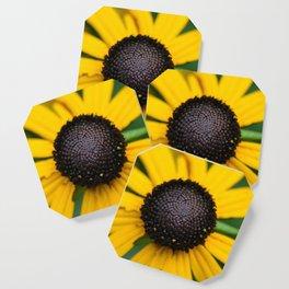 flower center Coaster