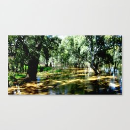 Light & Shadows Canvas Print