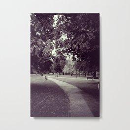 Park Path Metal Print