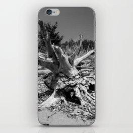 Driftwood 1 iPhone Skin