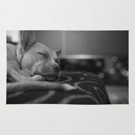 Sweet Sleeper Rug