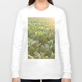 Nature photography, Italy sunset, italian photo, Puglia fine art, Sicilia, Long Sleeve T-shirt