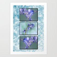 Bluebells Triptych Art Print