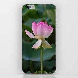 water lily #society6 #decor #buyart iPhone Skin