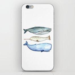 S'whale iPhone Skin
