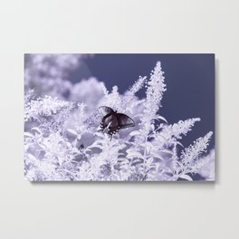 Infrared Butterfly Metal Print