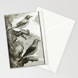 012 Pape Bec Rond (Fr)6 Stationery Cards