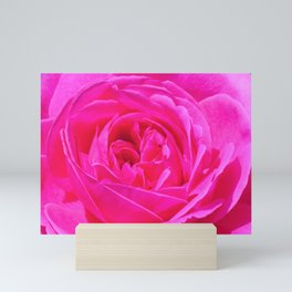 Artsy Pink Rose by Reay of Light Photography Mini Art Print