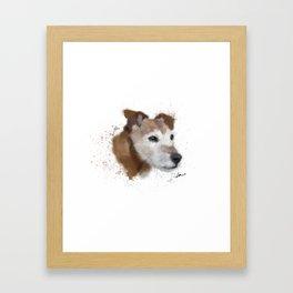 Jack Russell Terrier Dog Framed Art Print