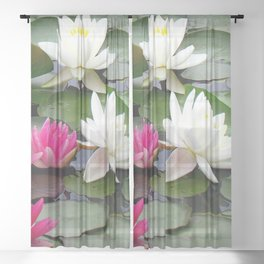 Water Lilies - Pink and White Sheer Curtain