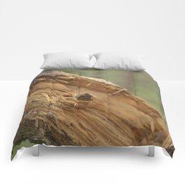 broken tree Comforters