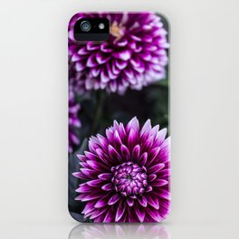 Soak Up Nature iPhone Case