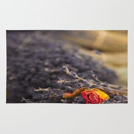 DRIED FLORAL BUNCH Rug