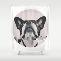 french bulldog Shower Curtains featuring French Bulldog by lori