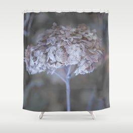 Frost Petals Of Hydrangea #decor buyart #society6 Shower Curtain