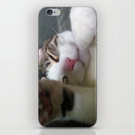 Best Cat that ever lived iPhone Skin