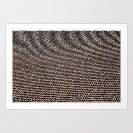 Roof pattern Art Print