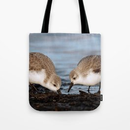 A Pair of Sanderlings Shares: A Meal is Better When Eaten Together Tote Bag