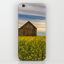 Dazzling Canola in Bloom iPhone Skin