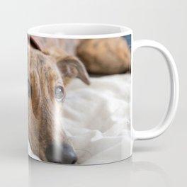 My Bed Coffee Mug