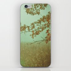 Autumn Day 23 iPhone & iPod Skin