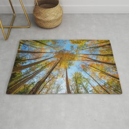 Kaleidoscope - Fall Colors in Trees of Great Smoky Mountains Rug