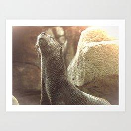 bd30e363dde9 River Otter with Head Stretched Upward Art Print