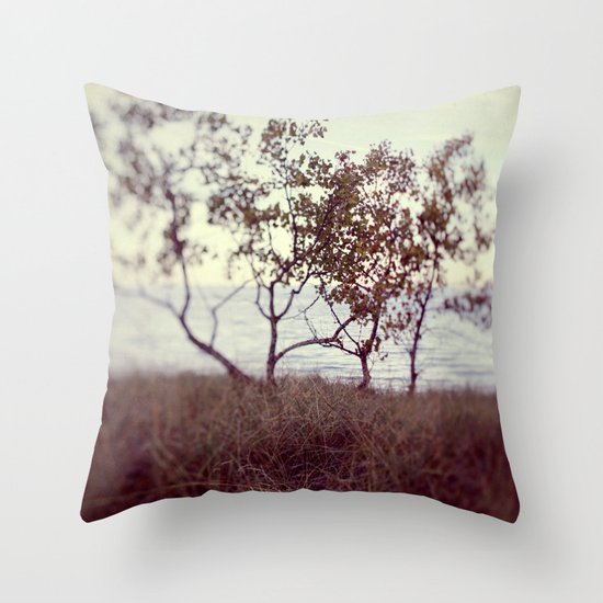 The Coast #2 Throw Pillow
