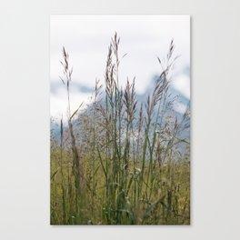 Swiss Alps - Flowers Canvas Print