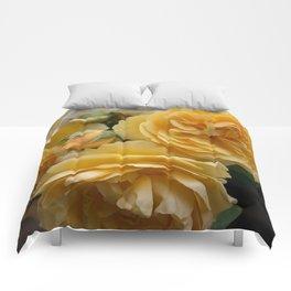 Graham Thomas old fashioned rose Comforters