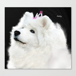 Samoyed Portrait; Harley at 13 yrs Canvas Print