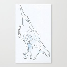 RaffSkull Canvas Print