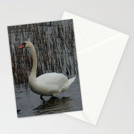 Mute Swans Donegal Ireland Stationery Cards