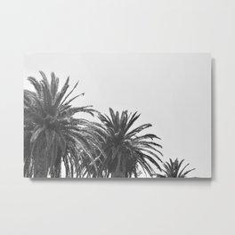 Black and White Palm Trees 02 Metal Print