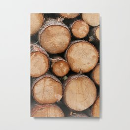 Logs Just Sit There  Metal Print