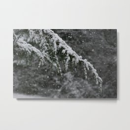 Snowy Day 3 Metal Print