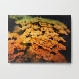 Tarnished Blooms Metal Print