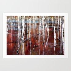 Automn Swamp Art Print