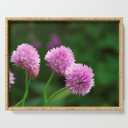 Delicate pink chive flowers Serving Tray