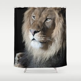Portrait of a King Shower Curtain